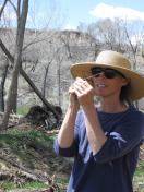 Dr. Alison Graff, Plant Ecologist and Wetland Specialist
